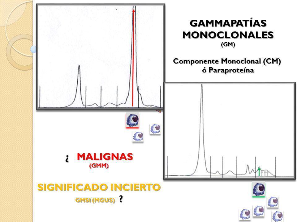 Componente Monoclonal (CM) ó Paraproteína