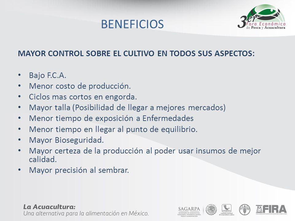 BENEFICIOS MAYOR CONTROL SOBRE EL CULTIVO EN TODOS SUS ASPECTOS: