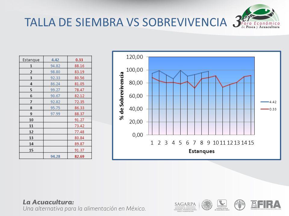TALLA DE SIEMBRA VS SOBREVIVENCIA