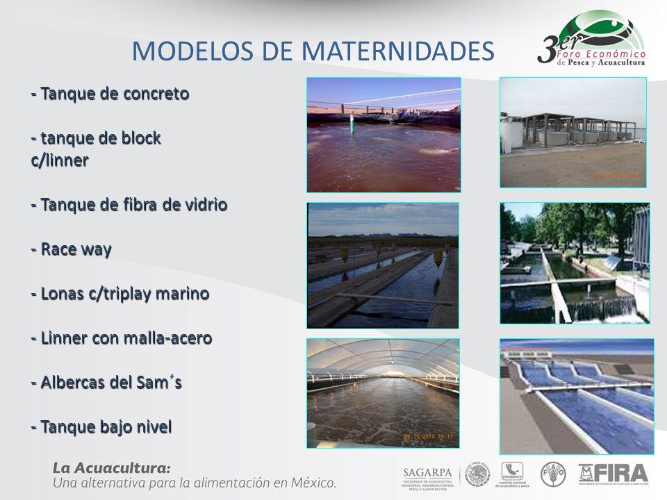 MODELOS DE MATERNIDADES