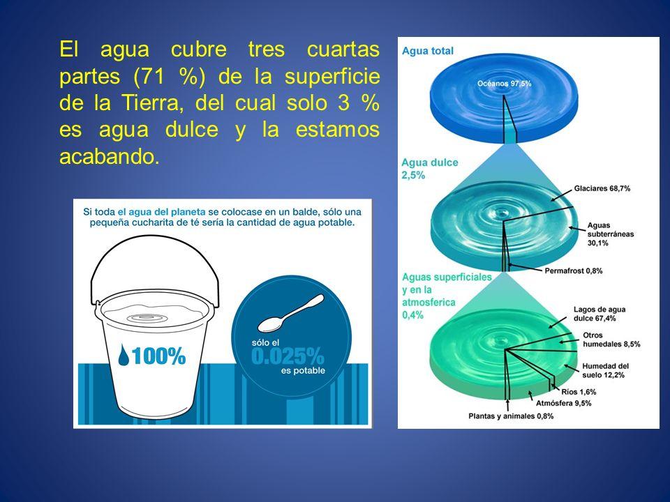 El agua cubre tres cuartas partes (71 %) de la superficie de la Tierra, del cual solo 3 % es agua dulce y la estamos acabando.