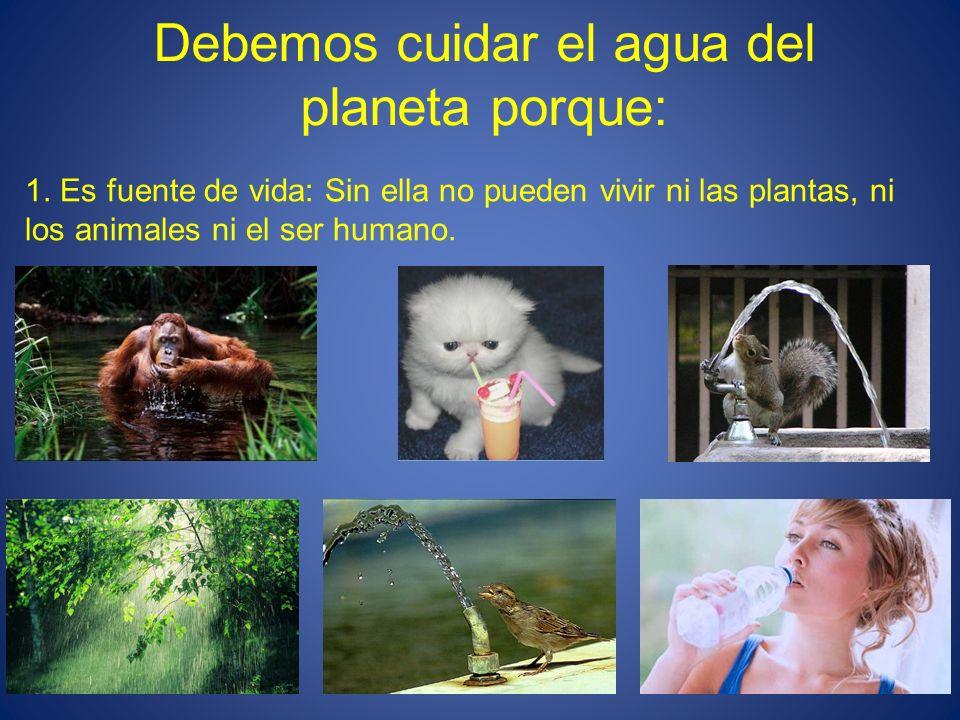 Debemos cuidar el agua del planeta porque: