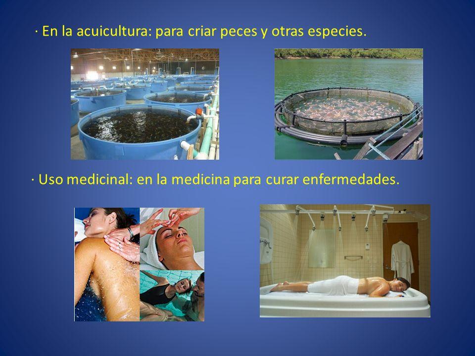 · En la acuicultura: para criar peces y otras especies.