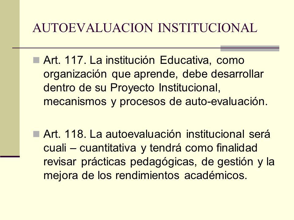 AUTOEVALUACION INSTITUCIONAL