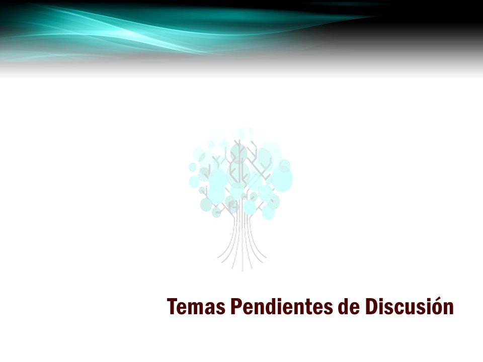 Temas Pendientes de Discusión