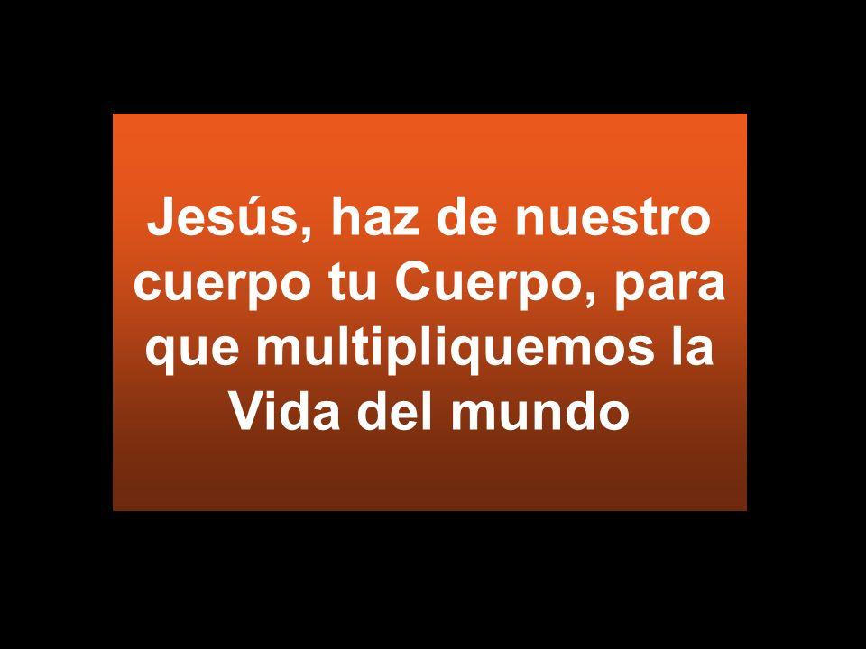 Jesús, haz de nuestro cuerpo tu Cuerpo, para que multipliquemos la Vida del mundo