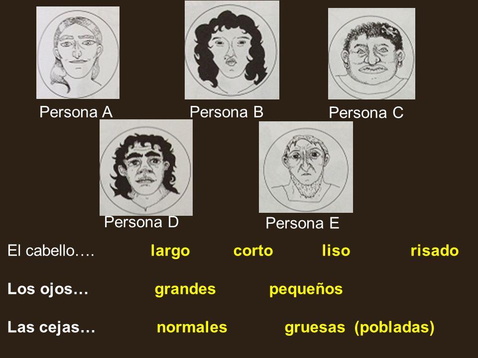 Persona A Persona B. Persona C. Persona D. Persona E. El cabello…. largo corto liso risado.