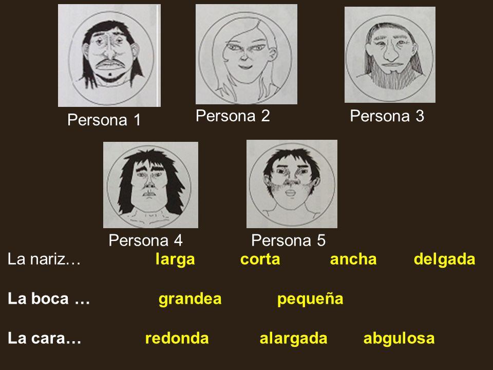 Persona 2 Persona 3. Persona 1. Persona 4. Persona 5. La nariz… larga corta ancha delgada.