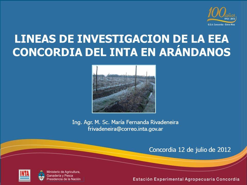 LINEAS DE INVESTIGACION DE LA EEA CONCORDIA DEL INTA EN ARÁNDANOS