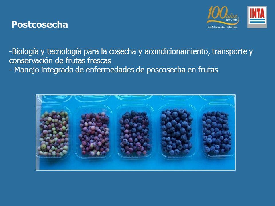 Postcosecha Biología y tecnología para la cosecha y acondicionamiento, transporte y conservación de frutas frescas.