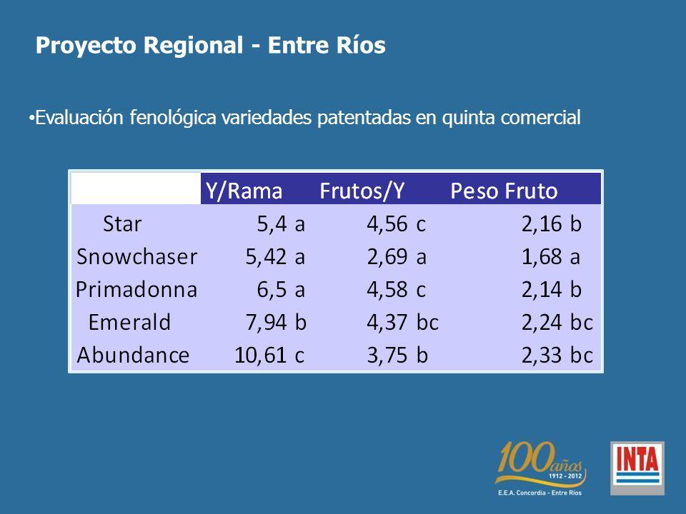Proyecto Regional - Entre Ríos