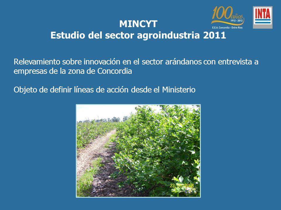 Estudio del sector agroindustria 2011