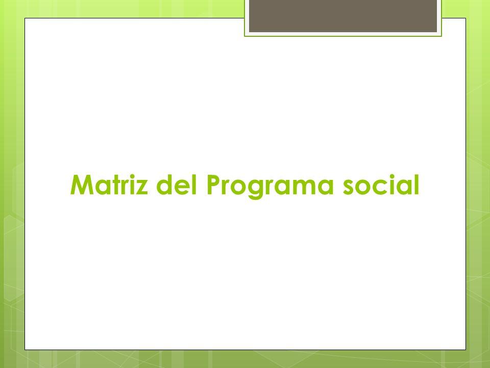 Matriz del Programa social