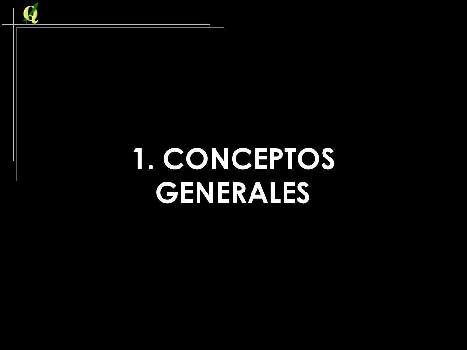 1. CONCEPTOS GENERALES