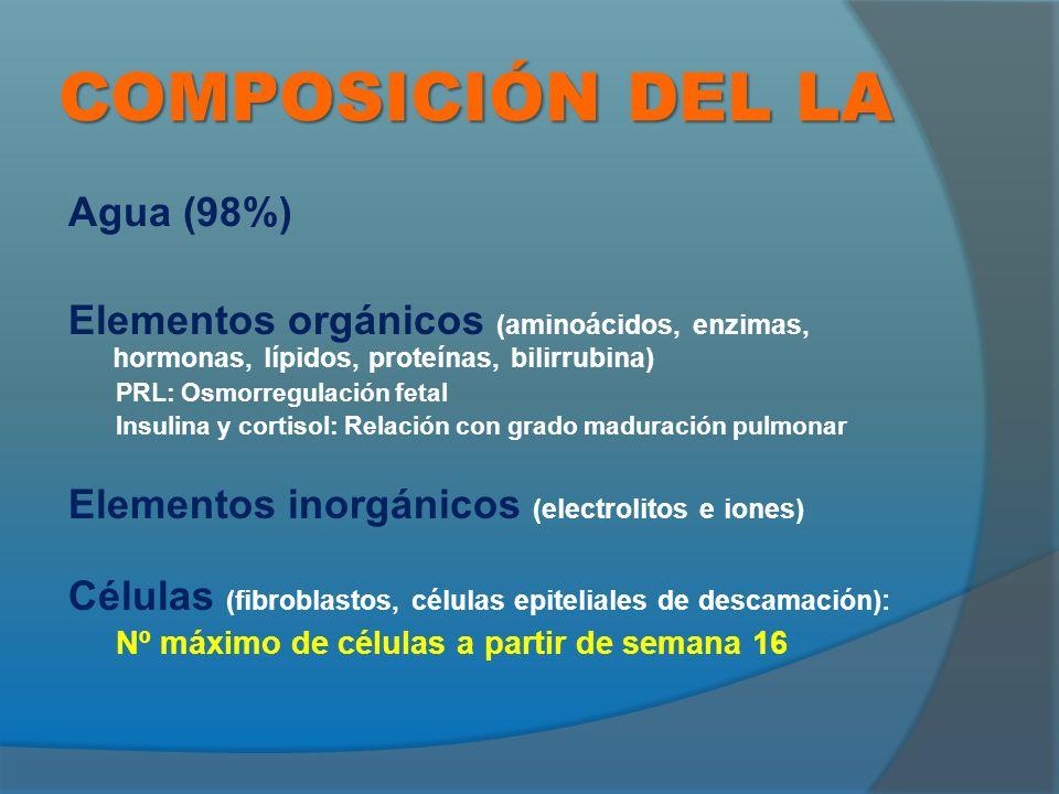 COMPOSICIÓN DEL LA Agua (98%)