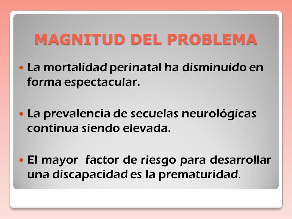 MAGNITUD DEL PROBLEMA La mortalidad perinatal ha disminuído en forma espectacular.
