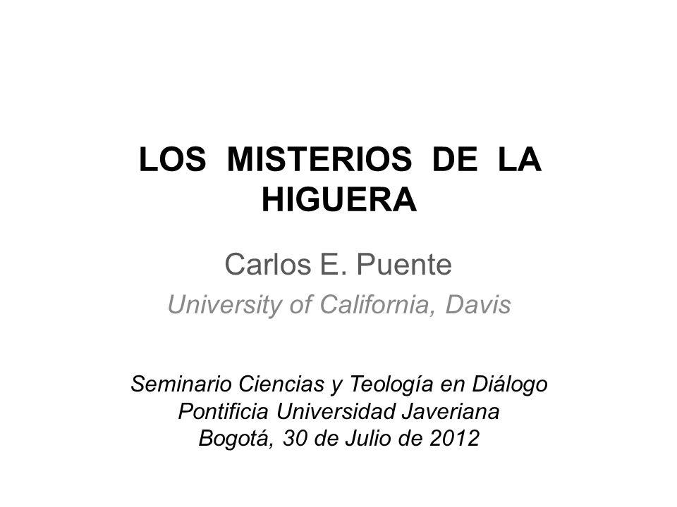 LOS MISTERIOS DE LA HIGUERA