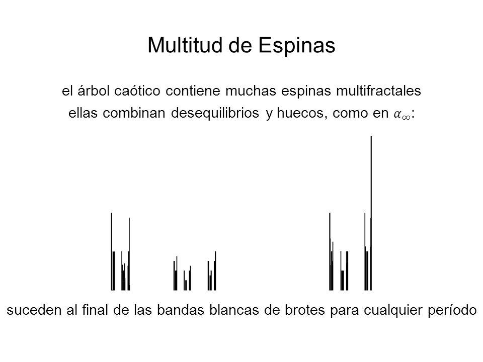Multitud de Espinas el árbol caótico contiene muchas espinas multifractales. ellas combinan desequilibrios y huecos, como en 𝛼 ∞ :