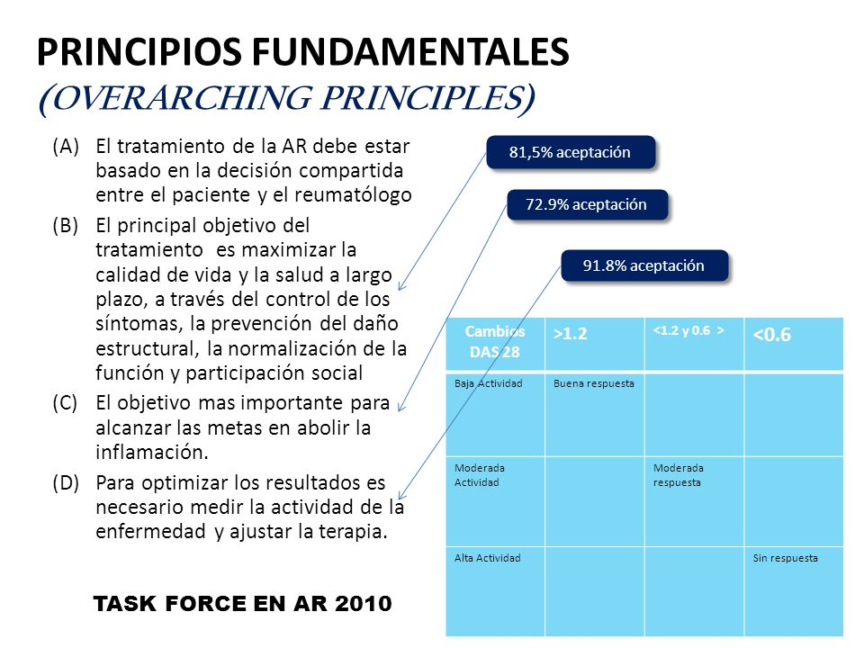 Principios fundamentales (Overarching principles)