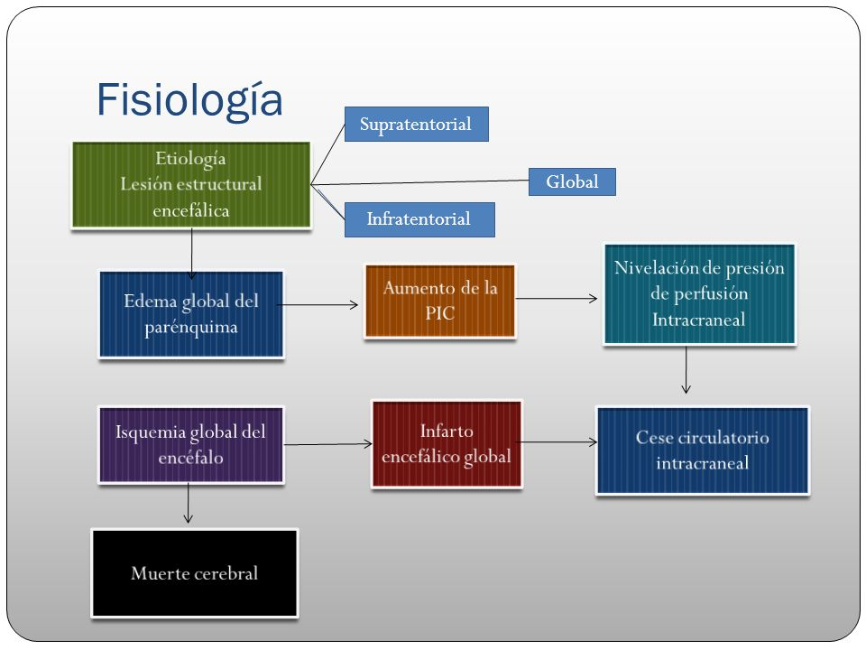 Fisiología Supratentorial Etiología Lesión estructural encefálica