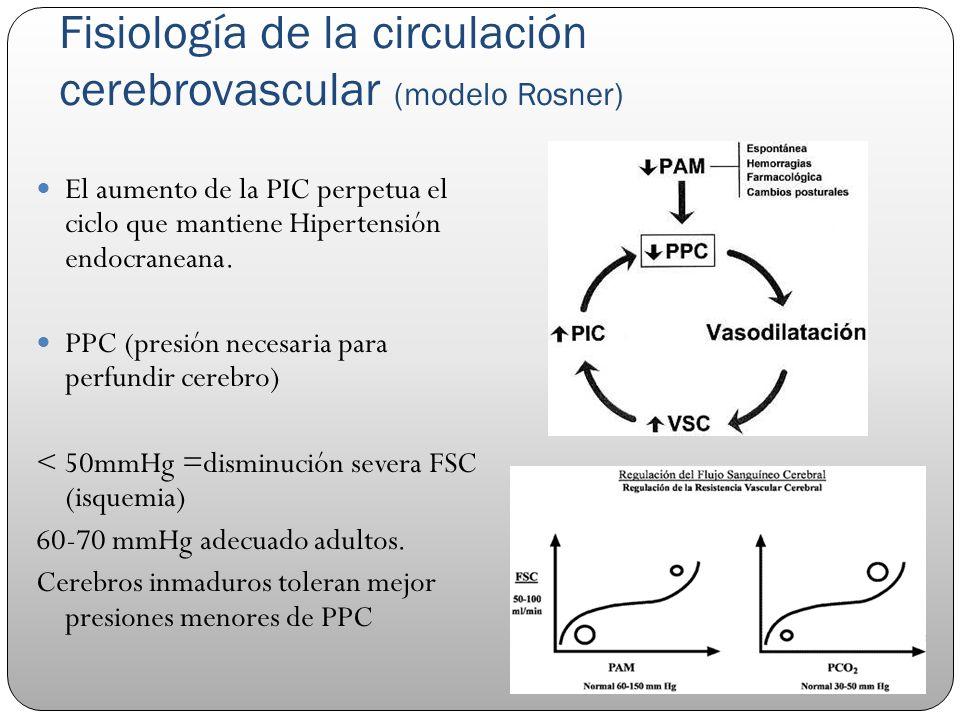 Fisiología de la circulación cerebrovascular (modelo Rosner)