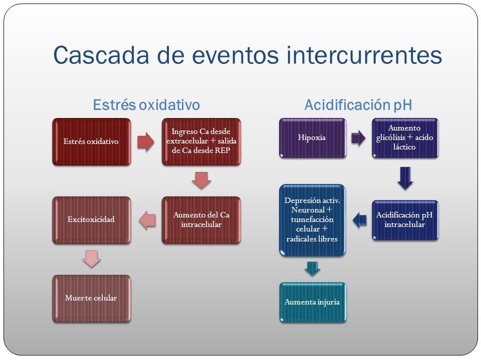 Cascada de eventos intercurrentes