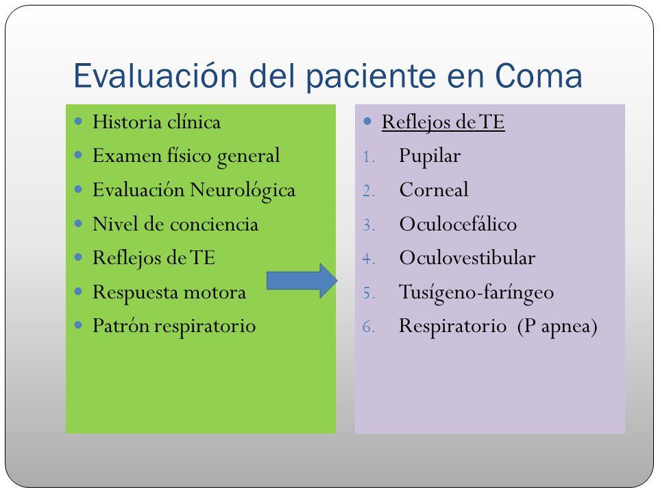 Evaluación del paciente en Coma