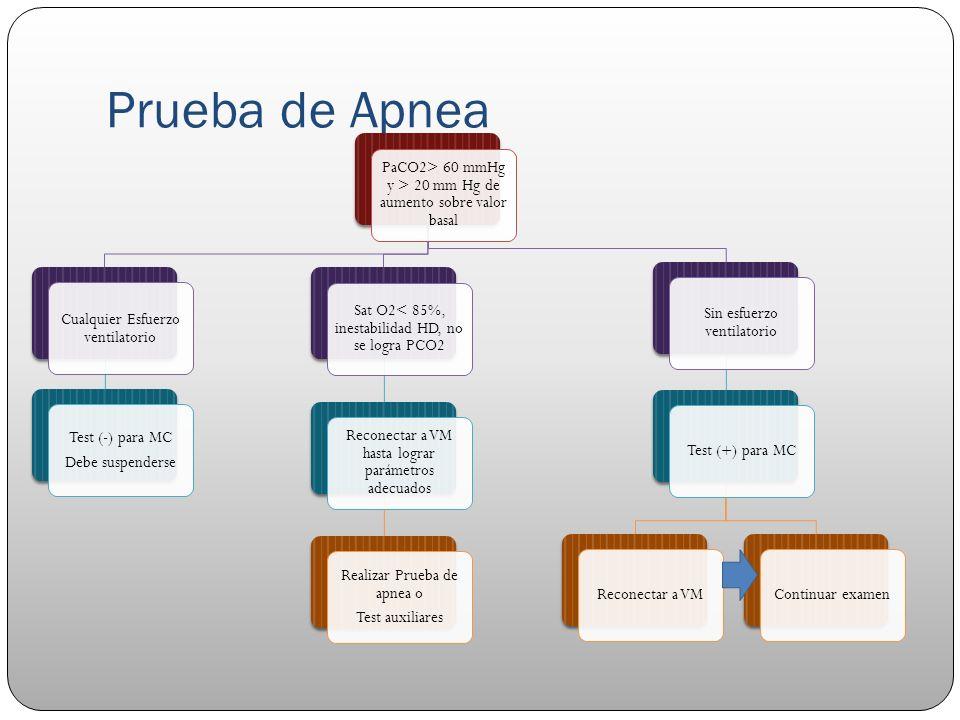 Prueba de Apnea Ausencia de esfuerzo respiratorio