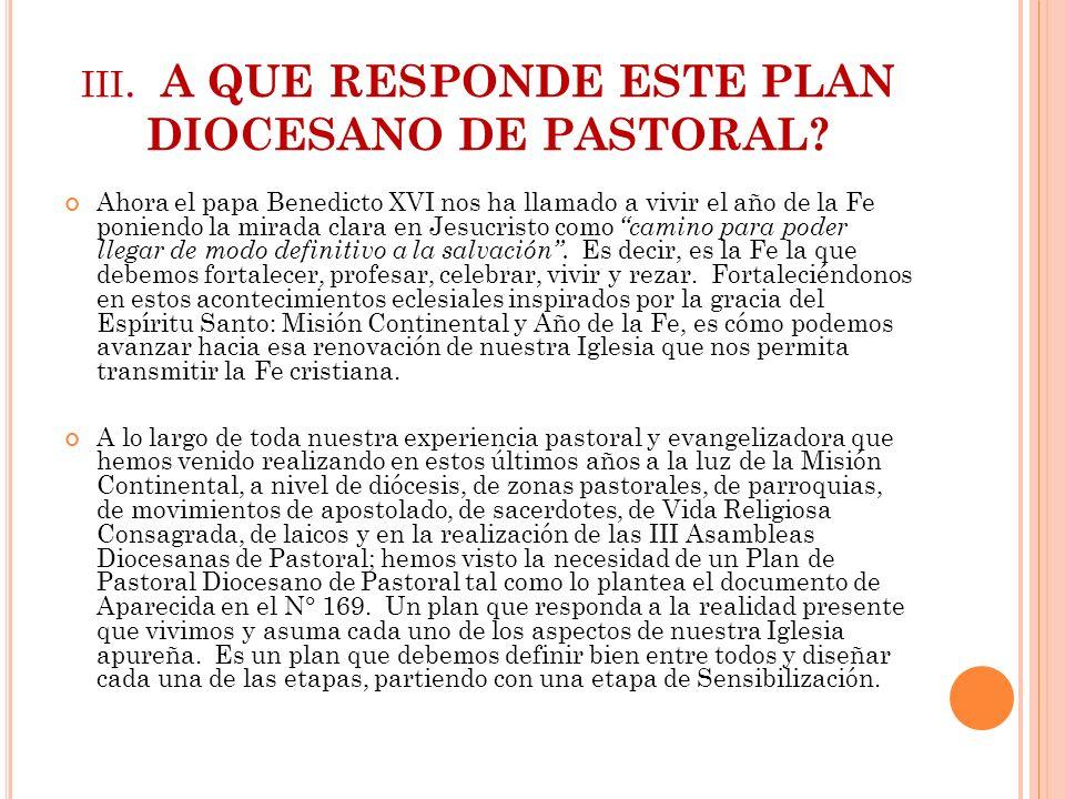 iii. A QUE RESPONDE ESTE PLAN DIOCESANO DE PASTORAL
