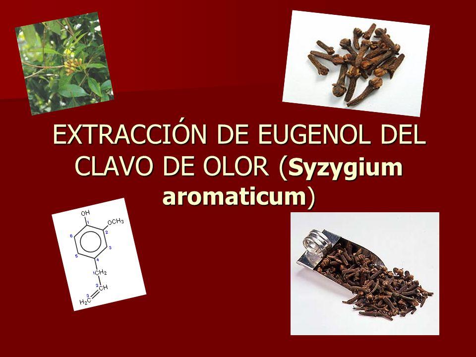 EXTRACCIÓN DE EUGENOL DEL CLAVO DE OLOR (Syzygium aromaticum)