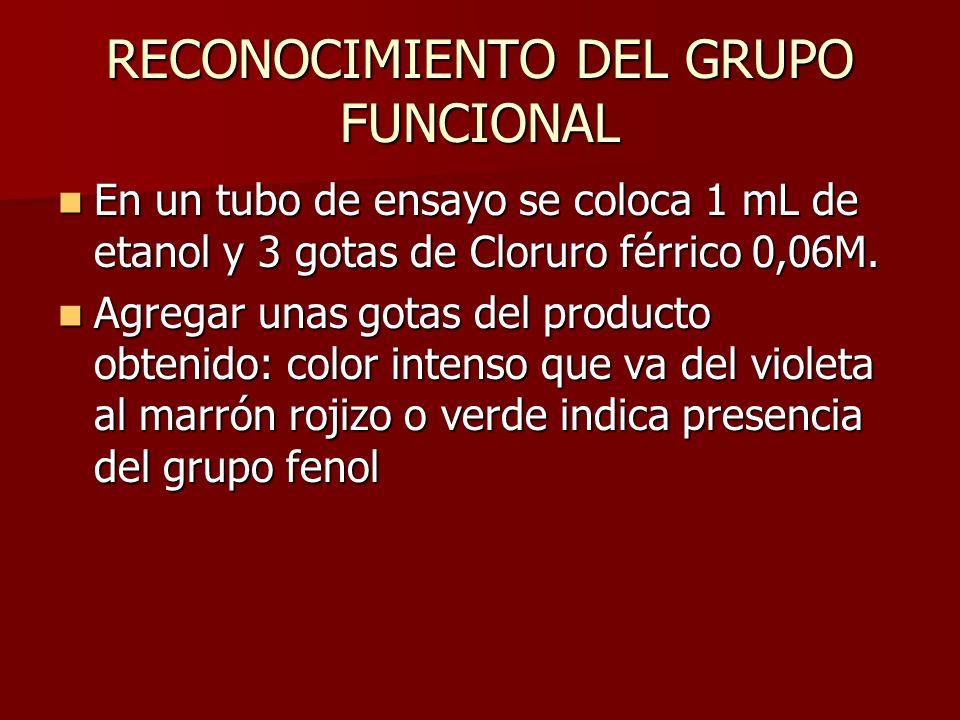 RECONOCIMIENTO DEL GRUPO FUNCIONAL