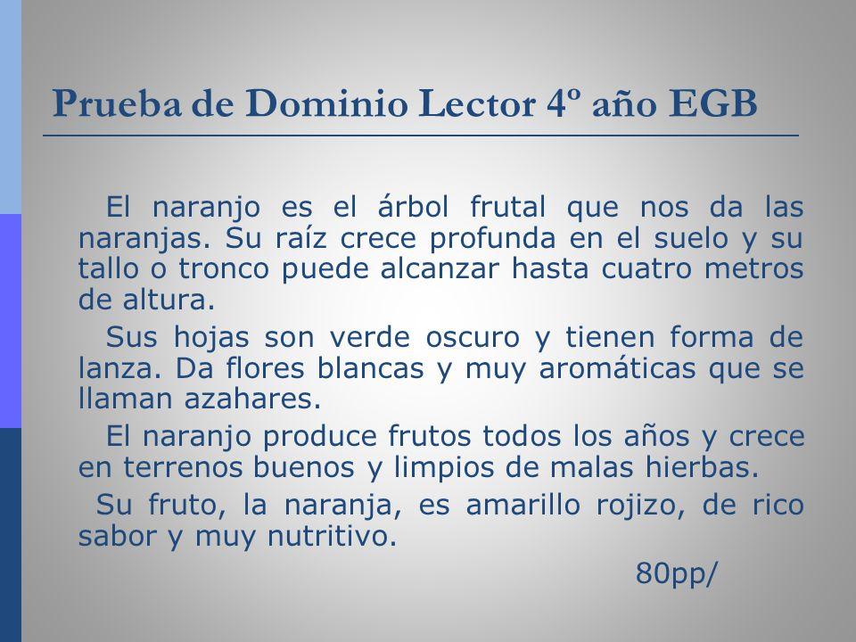 Prueba de Dominio Lector 4º año EGB