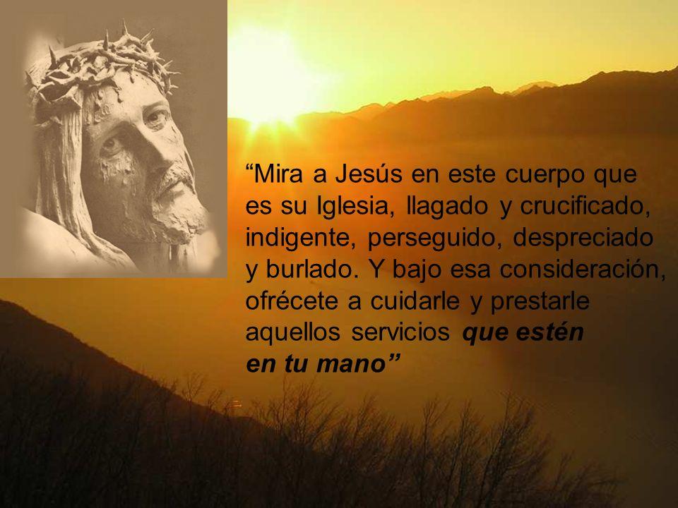 Mira a Jesús en este cuerpo que es su Iglesia, llagado y crucificado, indigente, perseguido, despreciado