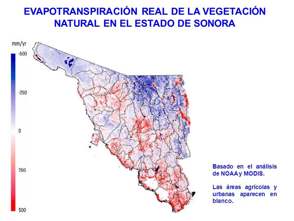 EVAPOTRANSPIRACIÓN REAL DE LA VEGETACIÓN NATURAL EN EL ESTADO DE SONORA