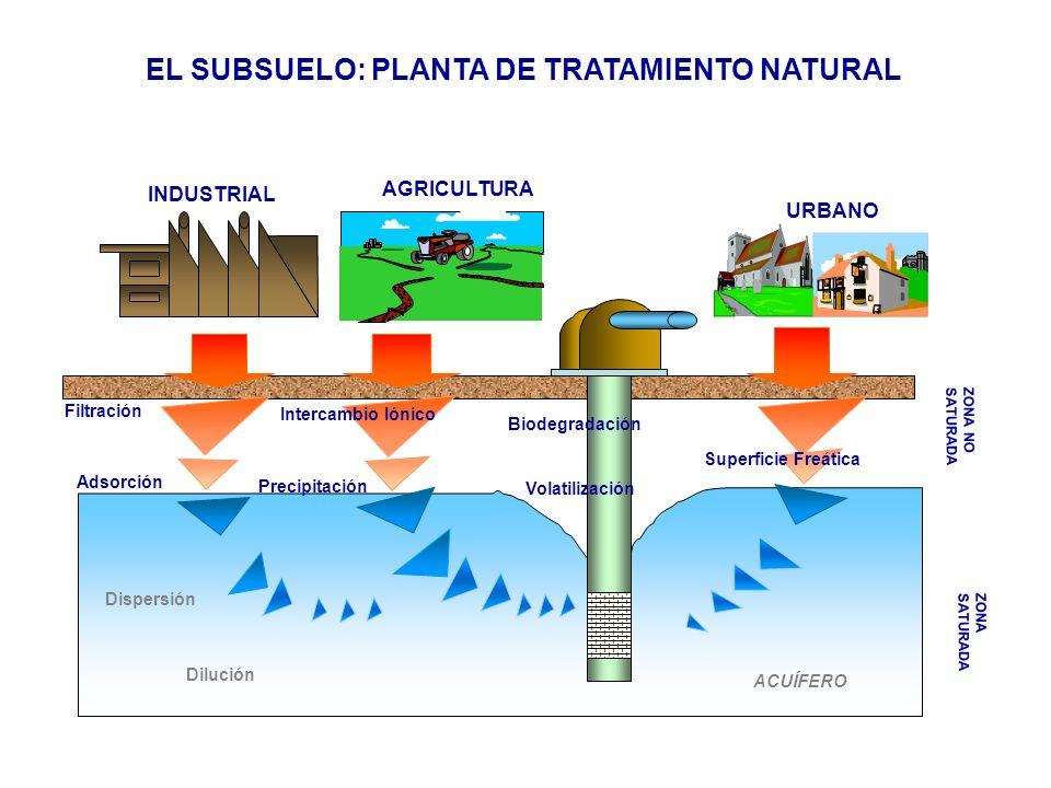 EL SUBSUELO: PLANTA DE TRATAMIENTO NATURAL