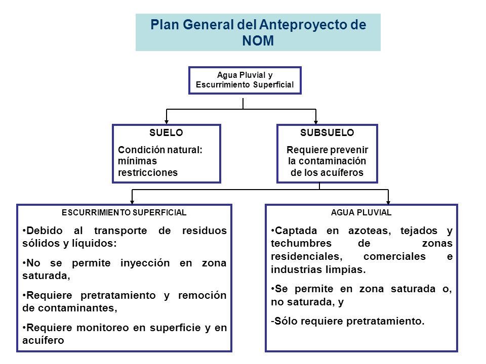 Plan General del Anteproyecto de NOM