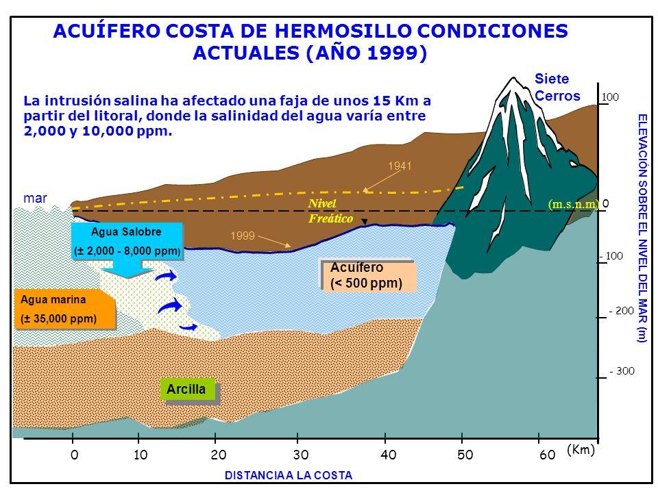 ACUÍFERO COSTA DE HERMOSILLO CONDICIONES ACTUALES (AÑO 1999)