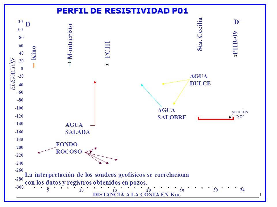 PERFIL DE RESISTIVIDAD P01