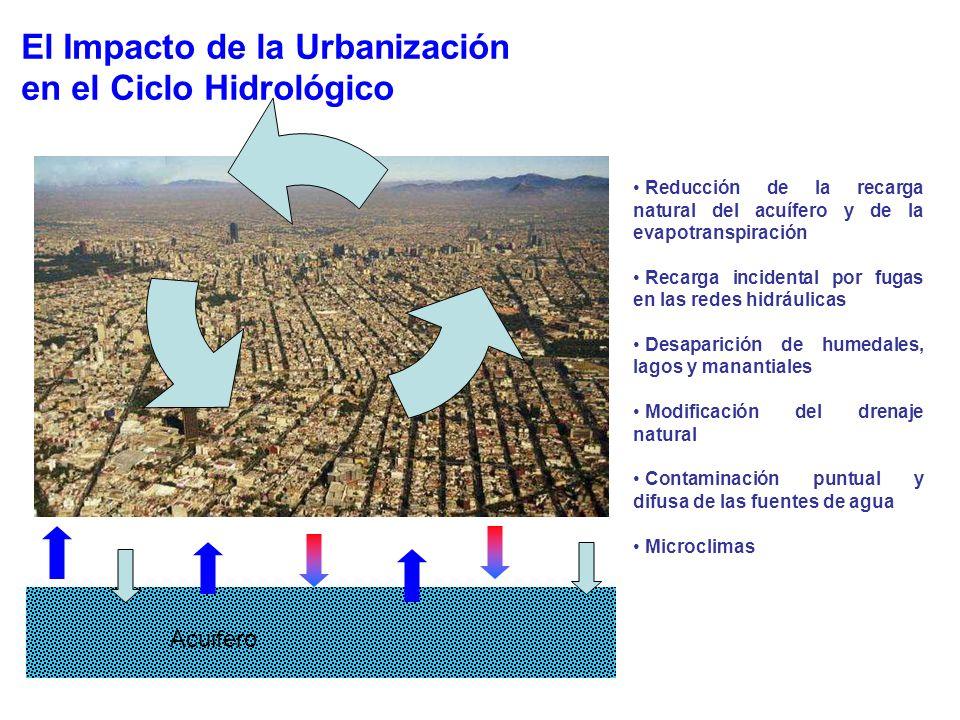 El Impacto de la Urbanización en el Ciclo Hidrológico