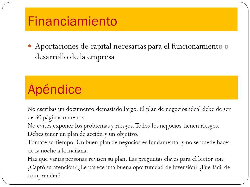 Financiamiento Apéndice