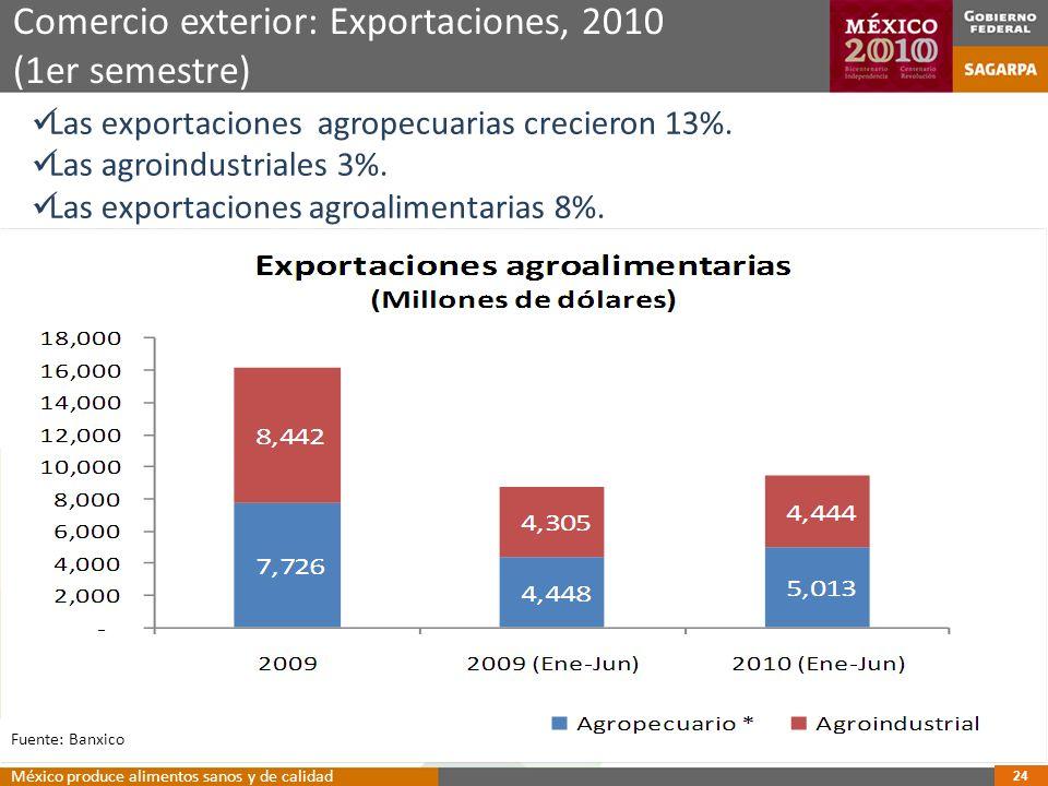 Comercio exterior: Exportaciones, 2010 (1er semestre)