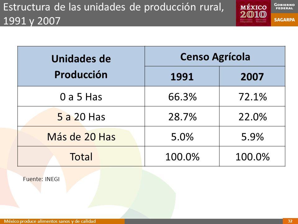 Producción Censo Agrícola 1991 2007