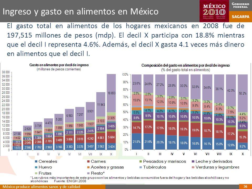 Ingreso y gasto en alimentos en México