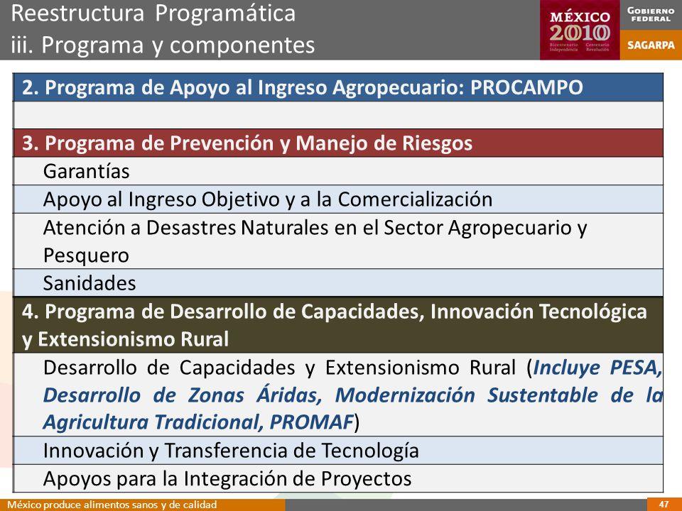 Reestructura Programática iii. Programa y componentes