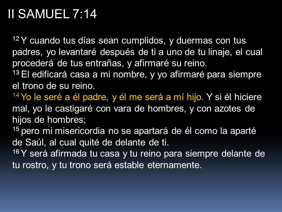 II SAMUEL 7:14