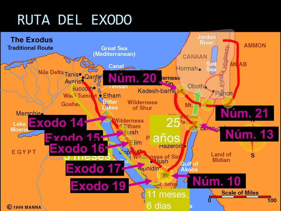 RUTA DEL EXODO Núm. 20 Núm. 21 Exodo 14 25 años Exodo 15 Núm. 13