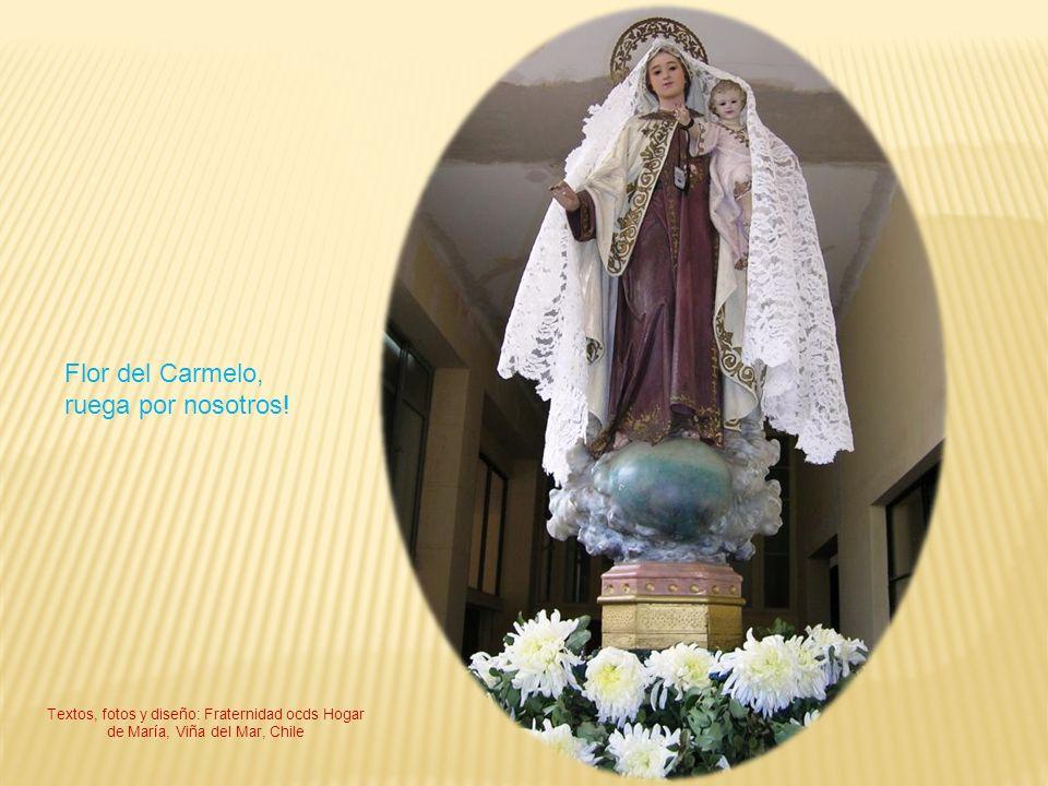 Flor del Carmelo, ruega por nosotros!