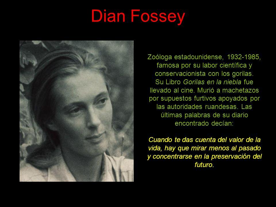 Dian Fossey Zoóloga estadounidense, 1932-1985, famosa por su labor científica y conservacionista con los gorilas.