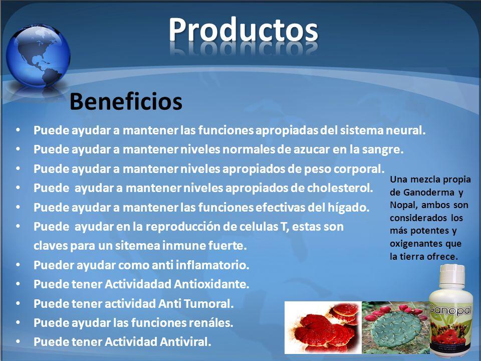 Productos Beneficios. Puede ayudar a mantener las funciones apropiadas del sistema neural.