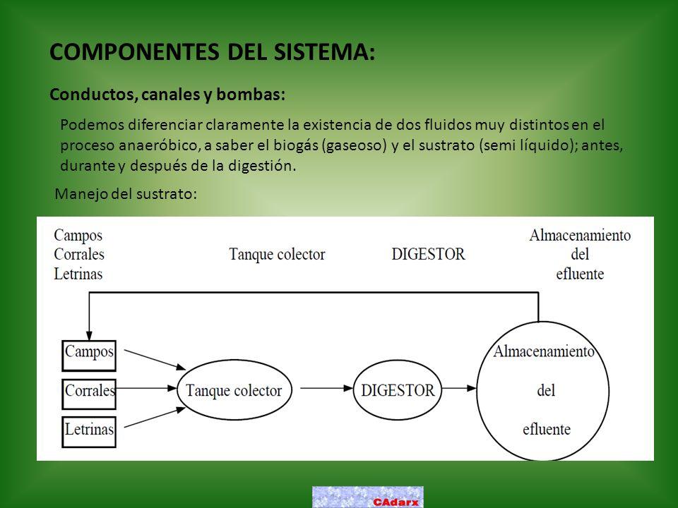 COMPONENTES DEL SISTEMA: